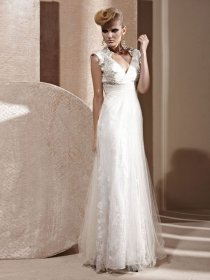 A-line V-neck Embroidery Organza Cape Sleeve Evening Dress
