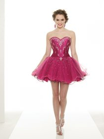 Classic Sweetheart Embroidery Organza Homecoming Dress